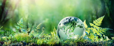 OSDA – a New Approach for the Sustainability of Data Centers