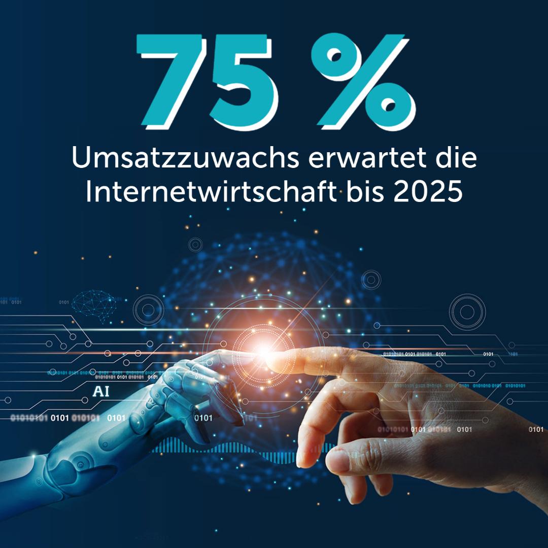Umsatzzuwachs Internetwirtschaft bis 2025