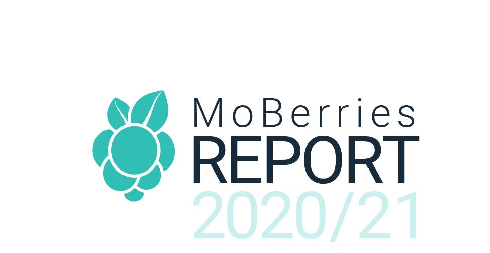 Moberries Report 1